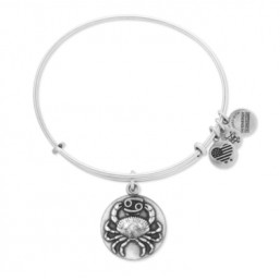"Alex and Ani pulsera rígida ""Zodiaco Cancer"" plateada"